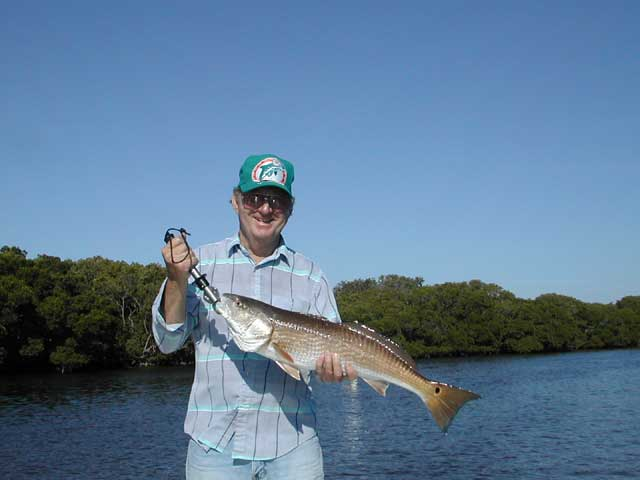 Tarpon snook and redfish fishing charters in southwest florida for Fishing charters englewood fl